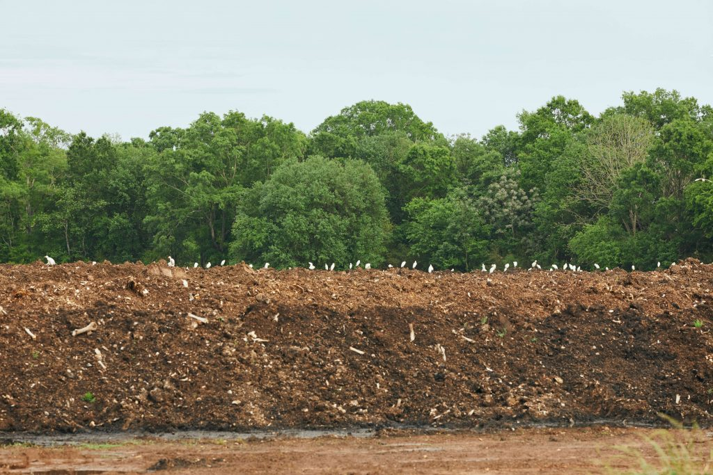White Oak Pastures compost pile