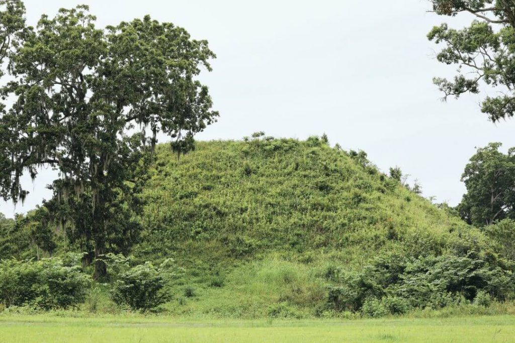 Kolomoki Mounds Georgia